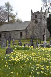 a small country church in the uk, pictured in spring with daffodils in the churchyard