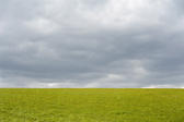 Empty green grassy field under an ominous cloudy grey sky