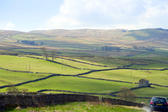 Panoroamic view of the lush green rolling hills in the English countryside of the Yorkshire Dales near Wensleydale